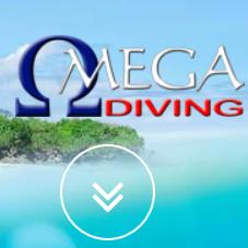 Omega Diving